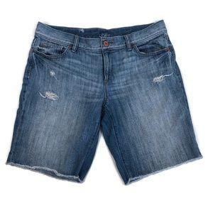 Ann Taylor Loft Distressed Cutoff Denim Shorts